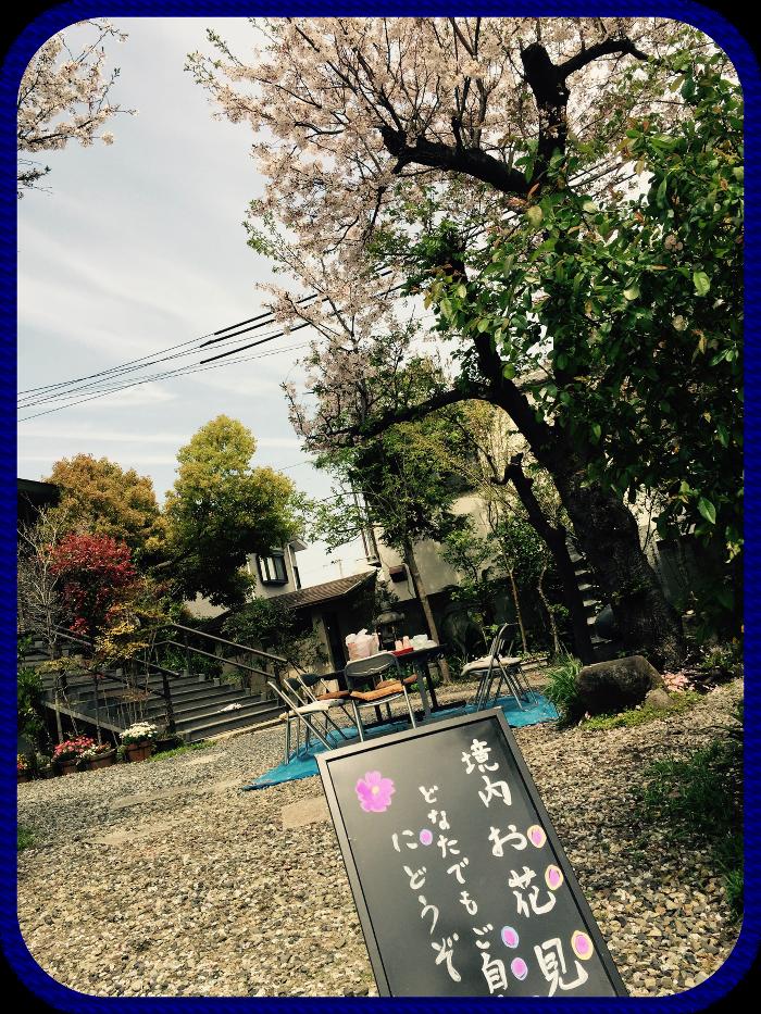 2017_hanami.png